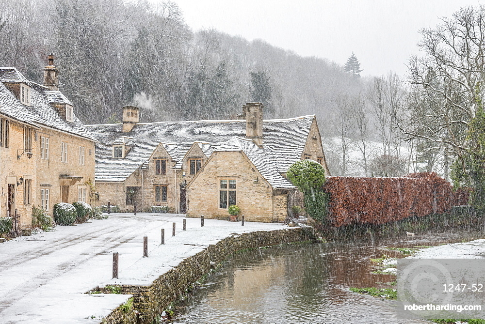 Snow covered houses by By Brook in Castle Combe with a dog enjoying a paddle, Wiltshire, England, United Kingdom, Europe