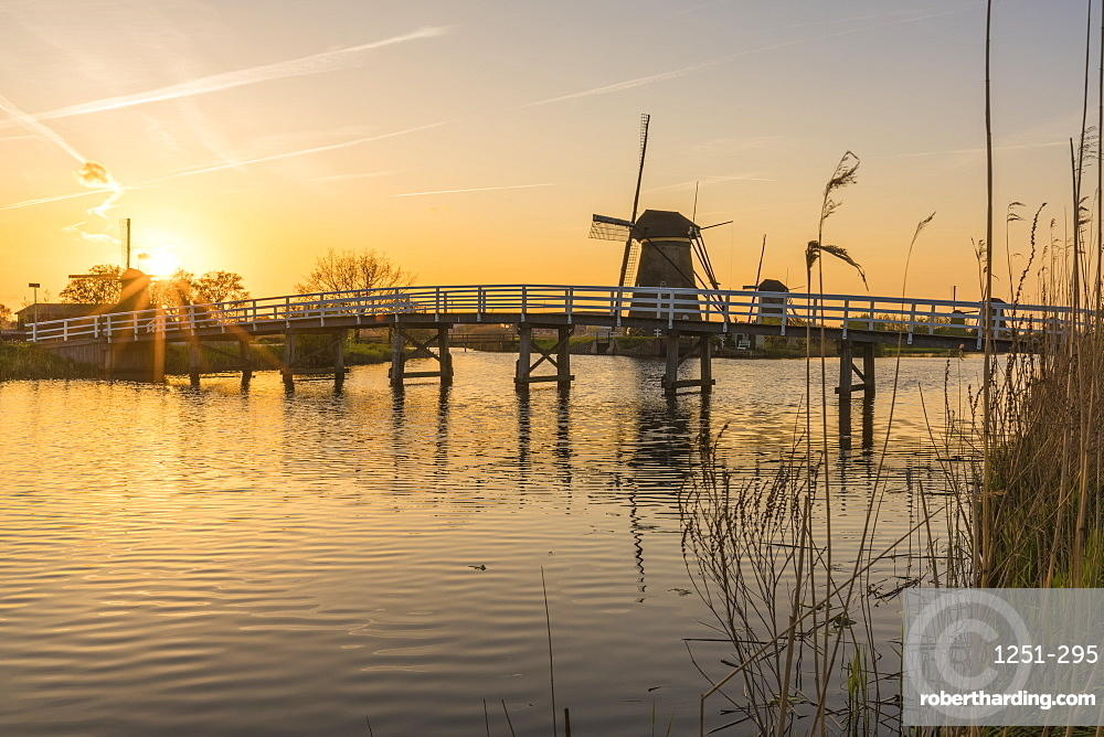 Bridge over the canal with windmills and reeds in the foreground at sunset, Kinderdijk, UNESCO World Heritage Site, Molenwaard municipality, South Holland province, Netherlands, Europe