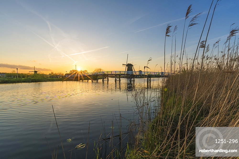 Bridge over the canal with windmills and reeds in the foreground, Kinderdijk, UNESCO World Heritage Site, Molenwaard municipality, South Holland province, Netherlands, Europe