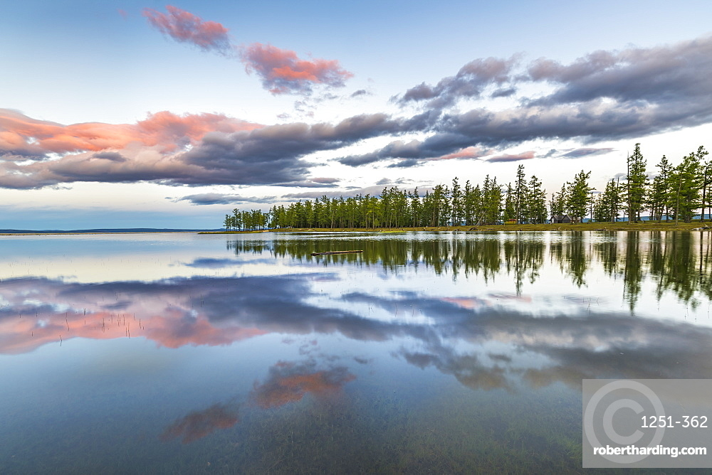 Fir trees and clouds reflecting on the suface of Hovsgol Lake at sunset, Hovsgol province, Mongolia, Central Asia, Asia