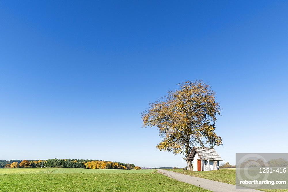 Little chapel under a tree. Schwenningen, Baden-Württemberg, Germany.