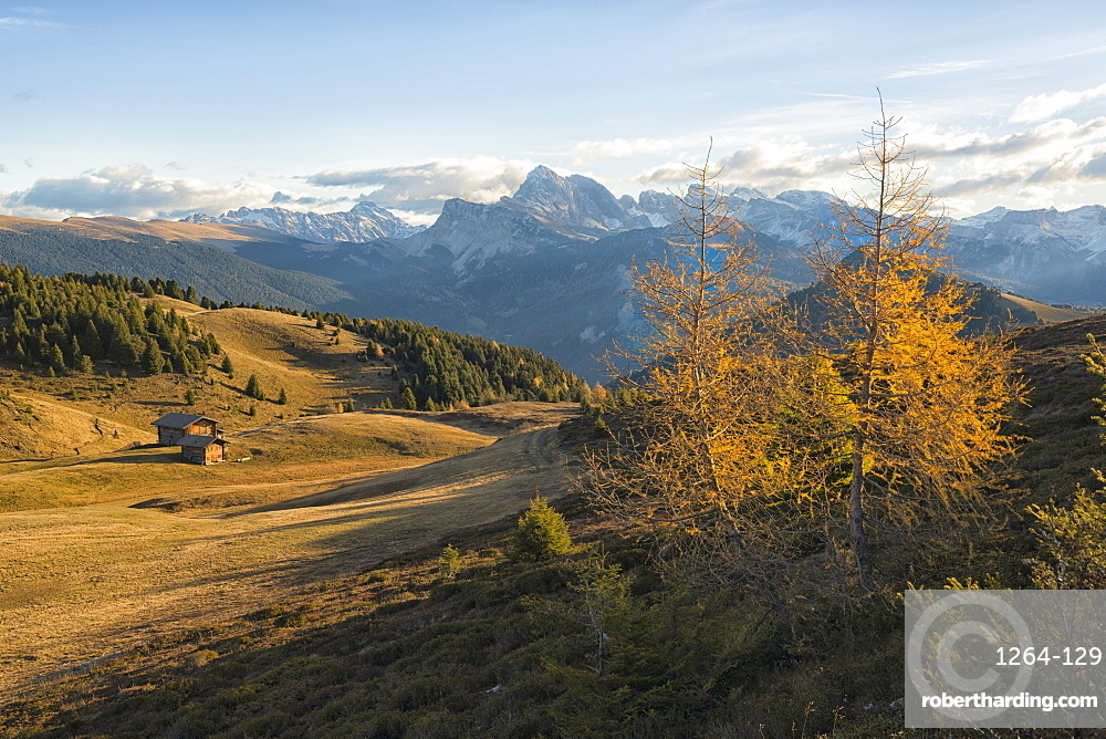 Italy, Trentino,Alpe di SIusi, , Odle mountain range at sunrise