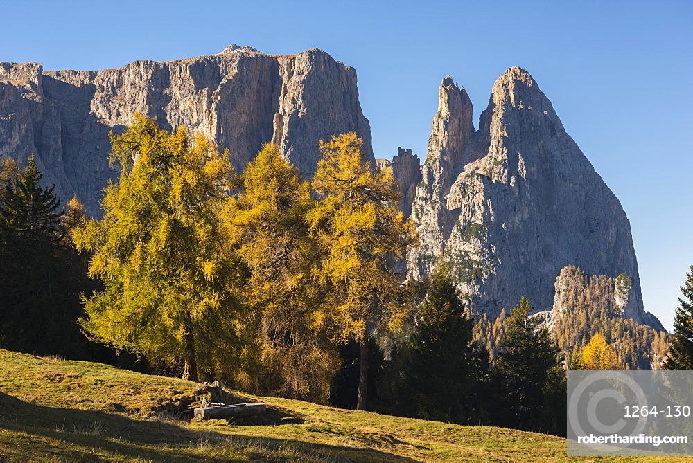 Sciliar in autumn, Alpe di Siusi, Trentino, Italy, Europe