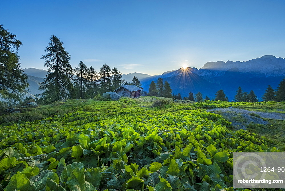 Brenta mountain range at sunrise, Rendena Valley, Trentino, Italy, Europe