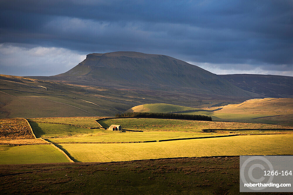 Soft light beneath the flanks of Pen-y-ghent (One of the famous Yorkshire 'Three Peaks') Yorkshire Dales, North Yorkshire