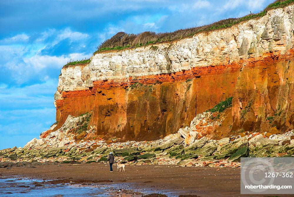 Chalk over limestone Cliffs at Old Hunstanton on the North Norfolk coast, Norfolk, England, United Kingdom, Europe