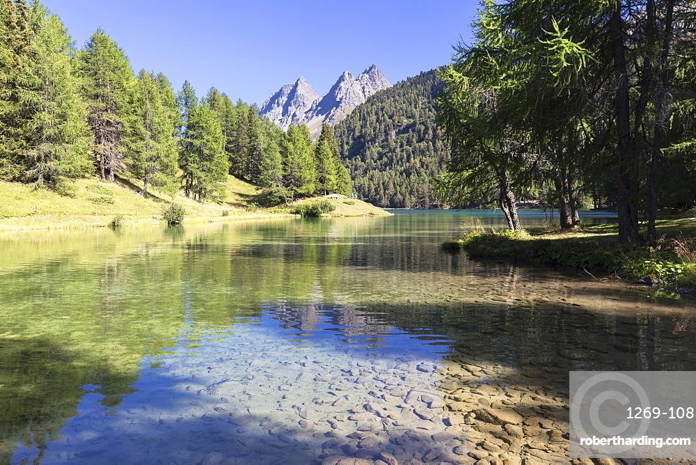 Lai da Palpuogna in the summer time, Albula Pass, Engadine Valley, Graubunden, Switzerland, Europe