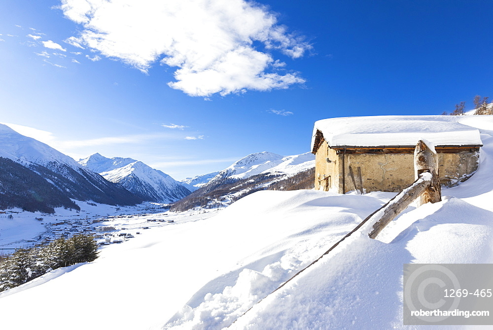 Traditional hut with view on the village in winter, Livigno, Valtellina, Lombardy, Italy, Europe