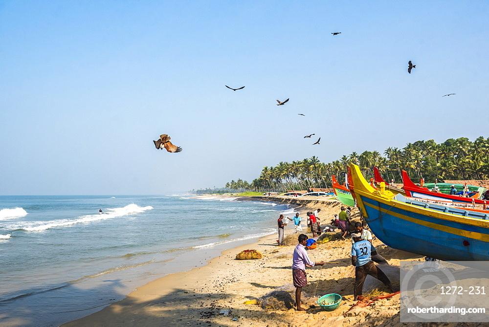 Fishermen at Kappil Beach, Varkala, Kerala, India, Asia
