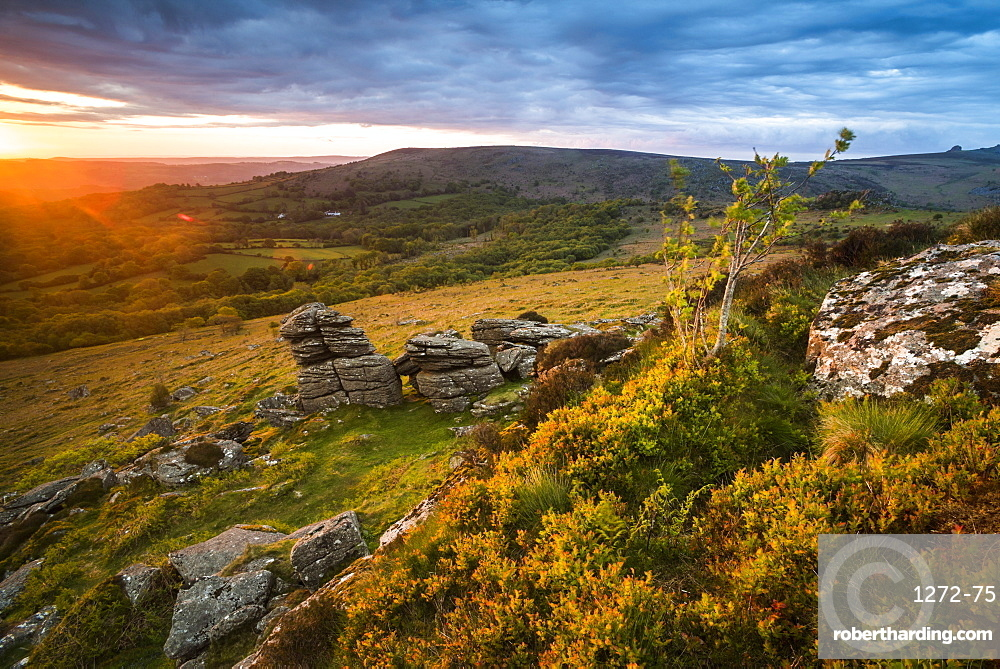 Tor at sunrise, Dartmoor National Park, Devon, England, United Kingdom