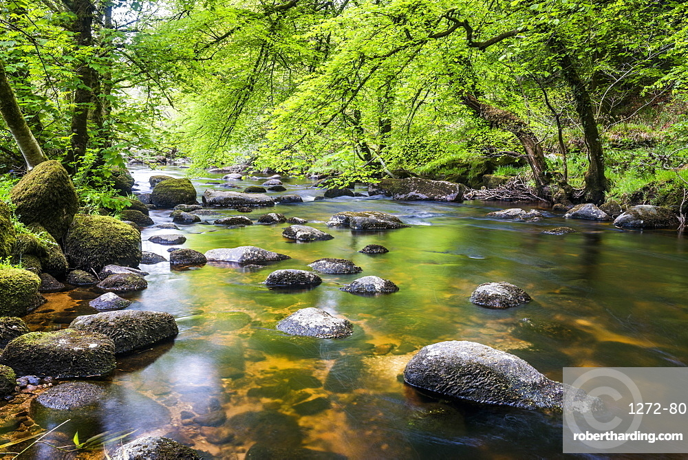River in Dartmoor, Devon, England, United Kingdom, Europe