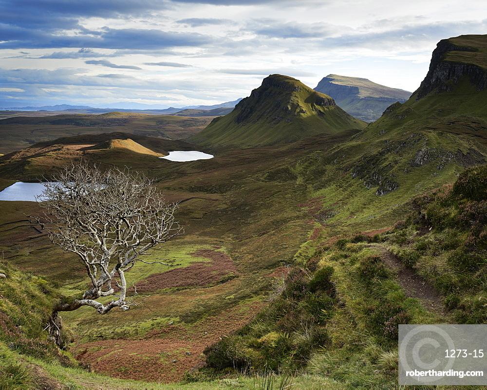 Quiraing, Isle of Skye, Inner Hebrides, Scotland, United Kingdom, Europe