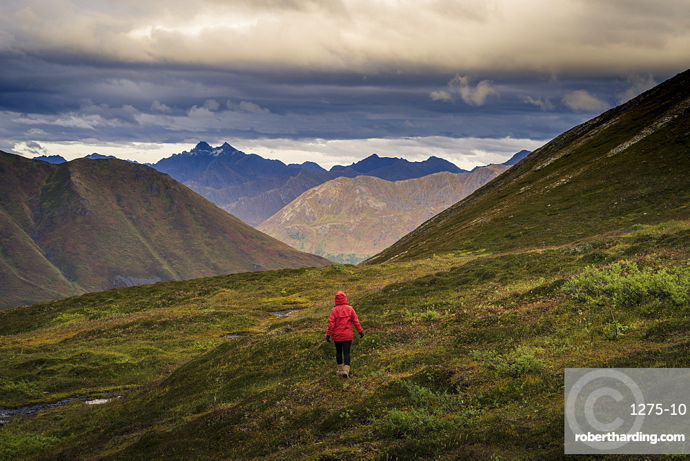 Lone hiker walks into Alaskan wilderness, Alaska, United States of America, North America