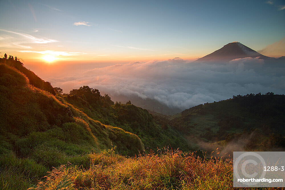 Golden sunrise at Sikunir, Java, Indonesia, Southeast Asia, Asia