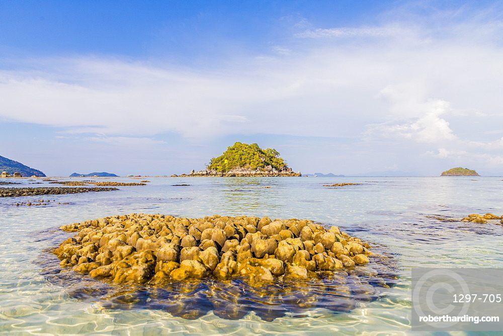 Exposed coral in Ko Lipe, in Tarutao National Marine Park, Thailand, Southeast Asia, Asia