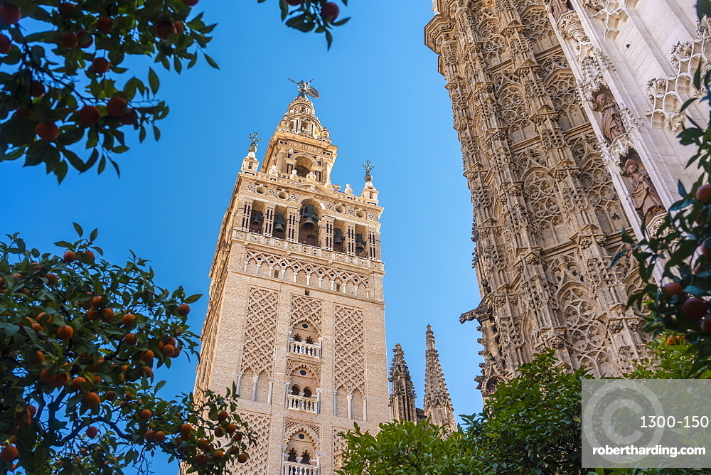 Cathedral of Seville and la Giralda