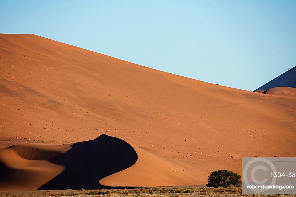 Sossusvlei National Park, Sunset at Dune along the main highway to Deadvlei, Namibia. Shot in late summer 2019.