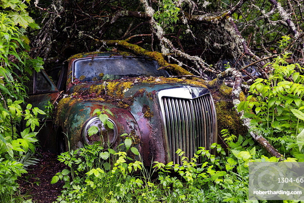 Bastnas Car Cemetery deep in the forests of the region of Varmland in Sweden, Scandinavia, Europe