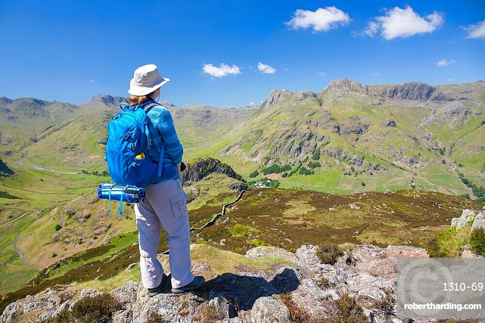 Hiker on summit of Lingmoor Fell, the Langdale Pikes beyond, Great Langdale, Lake District National Park, UNESCO World Heritage Site, Cumbria, England, United Kingdom, Europe
