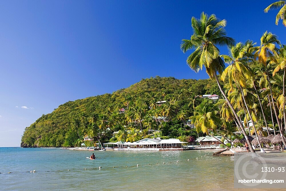 The Caribbean Sea off LaBas Beach, coconut palms at water's edge, Marigot Bay, Castries, St Lucia, Lesser Antilles, West Indies