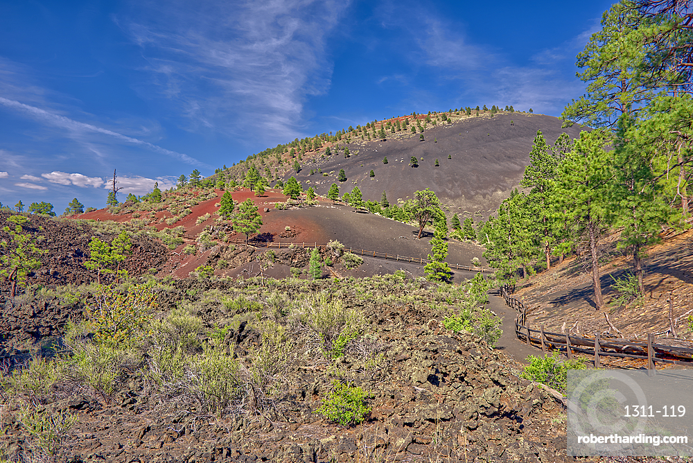 View from the Lower Lava Trail near Sunset Crater Volcano, north of Flagtaff, Arizona, United States of America, North America