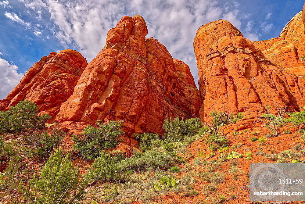 The walls of Cathedral Rock taken by going off the HiLine Trail and hiking up to the south side of the rock face, Arizona, United States of America, North America