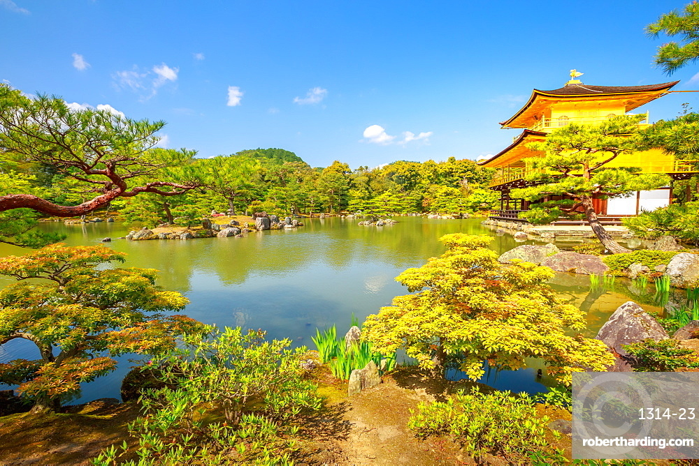 Kinkaku-ji, the Golden Pavilion, the Zen Buddhist temple, reflects in the lake surrounded by a scenic park. The Rokuon-jii is one of Kyoto's most important temples and Unesco heritage.