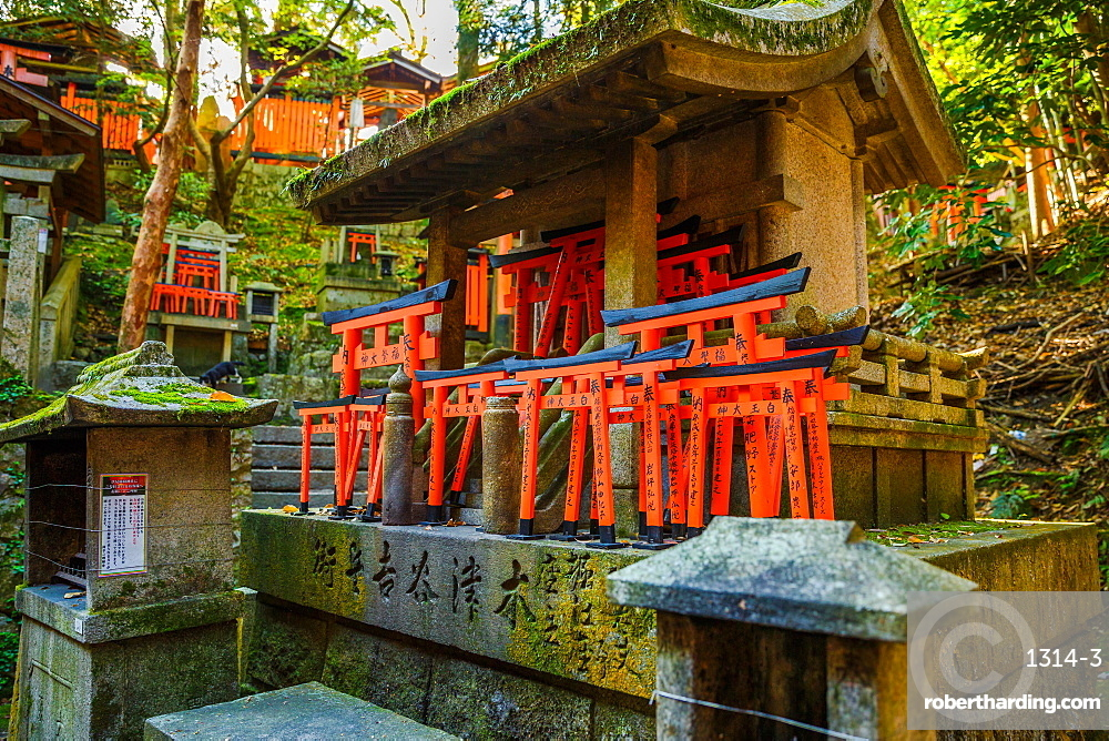 Kyoto, Japan Fushimi Inari Taisha is the most important Shinto shrine famous for its thousands of red torii gates.