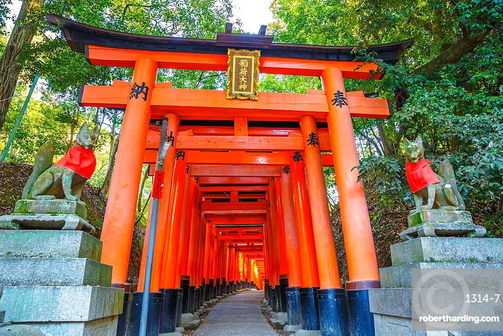 Thousand vermilion torii gates of the Shinto sanctuary of Fushimi Inari Taisha, south of Kyoto, Japan, Asia