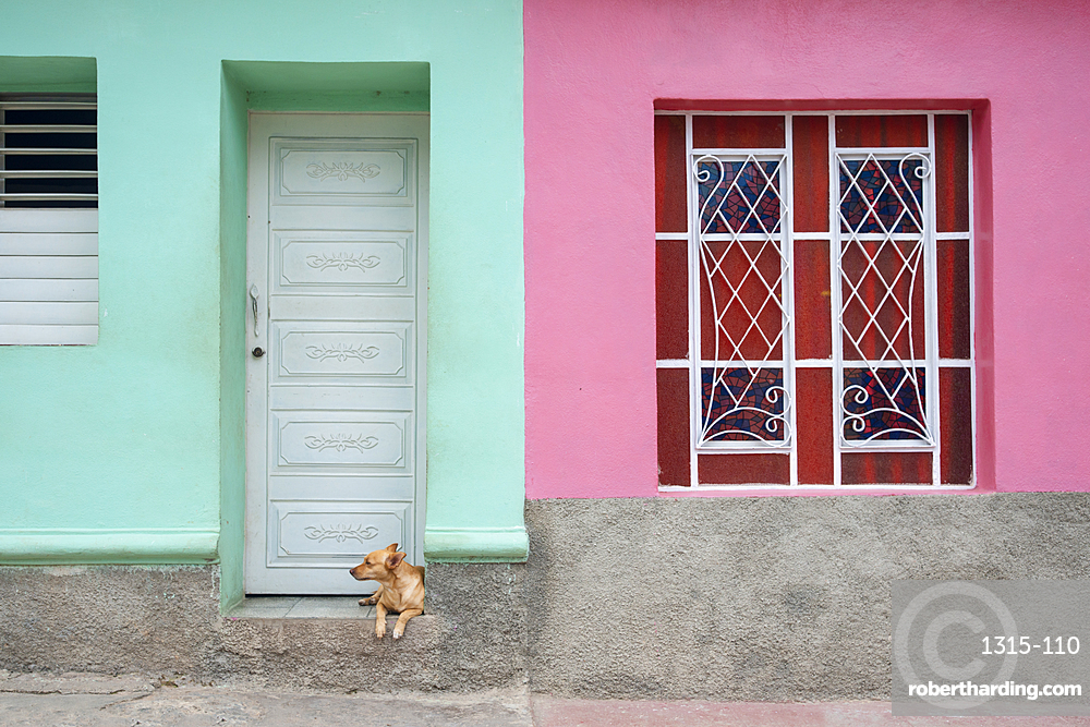 Dog lounging outside a colorful house in Trinidad, Cuba, West Indies, Caribbean, Central America