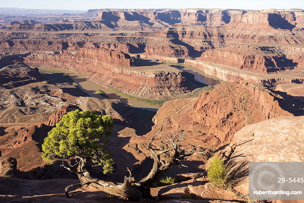 Dead Horse Point State Park, view from point down into Colorado River canyon, Moab, Utah, United States of America, North America