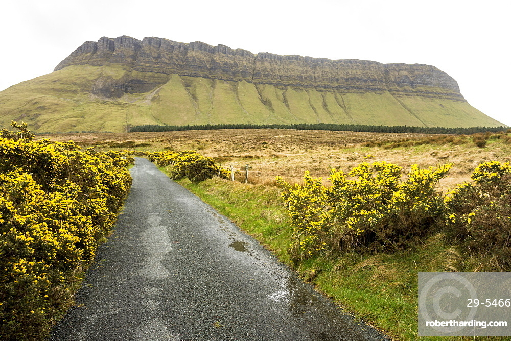 Benbulben, Dartry Mnts, County Sligo, Connacht, Republic of Ireland, Europe