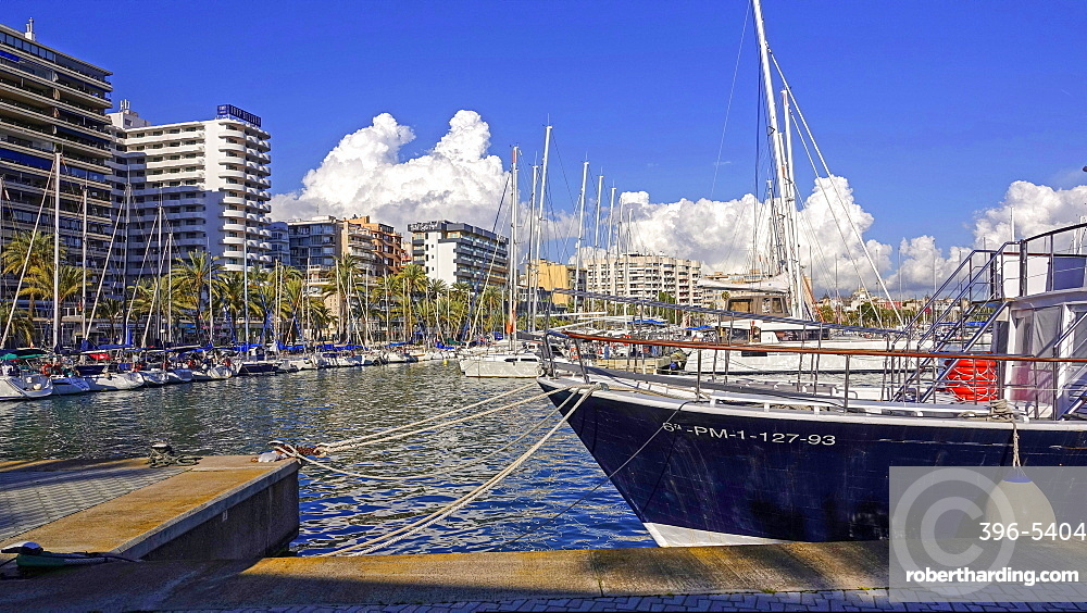 Marina of Palma de Mallorca, Majorca, Balearic Islands, Spain, Mediterranean, Europe