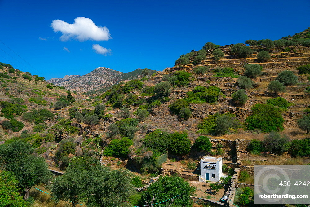 Small white dovecote in hilly country near Kamares Village, Sifnos, Cyclades, Greek Islands, Greece, Europe