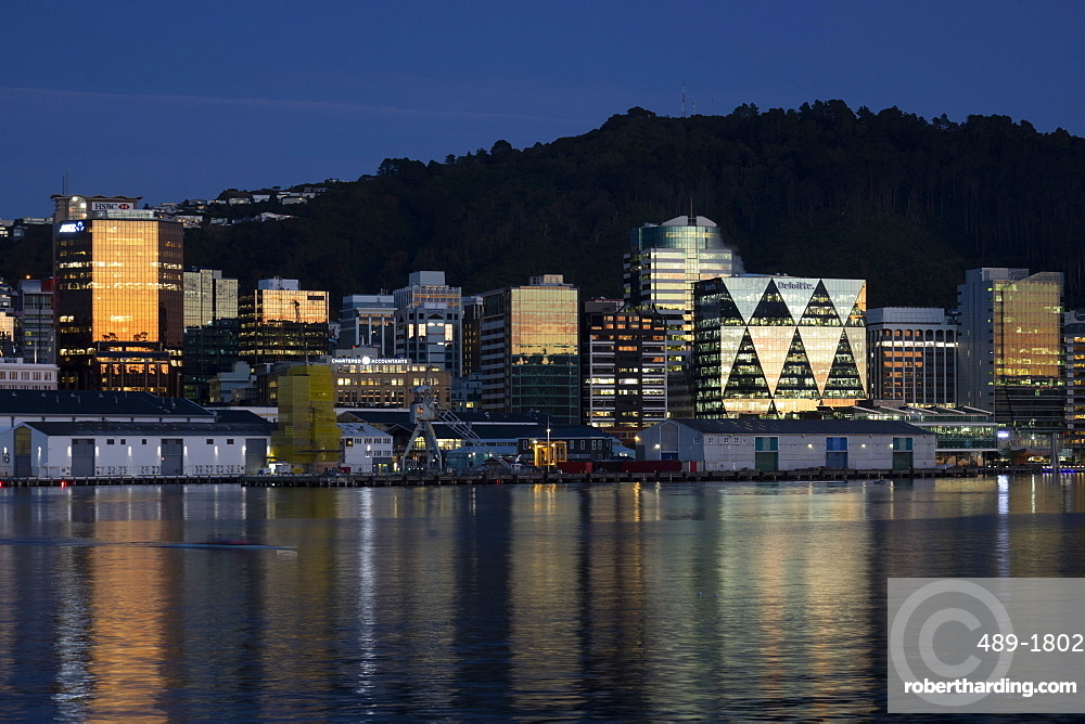 Wellington city and waterfront at dawn, New Zealand