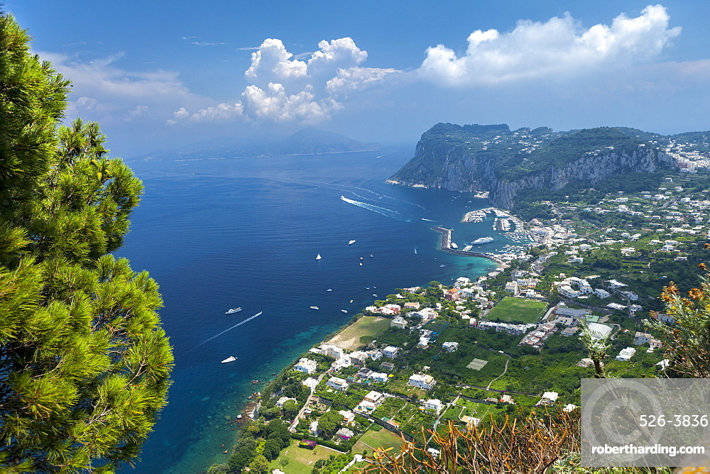 View over harbour towards mainland, Island of Capri, Italy, Mediterranean, Europe