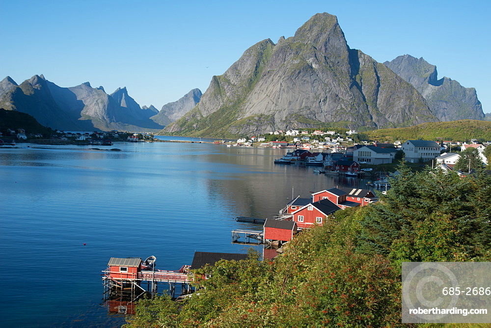 View over Reine Harbour, Lofoten Islands, Nordland, Norway, Scandinavia, Europe