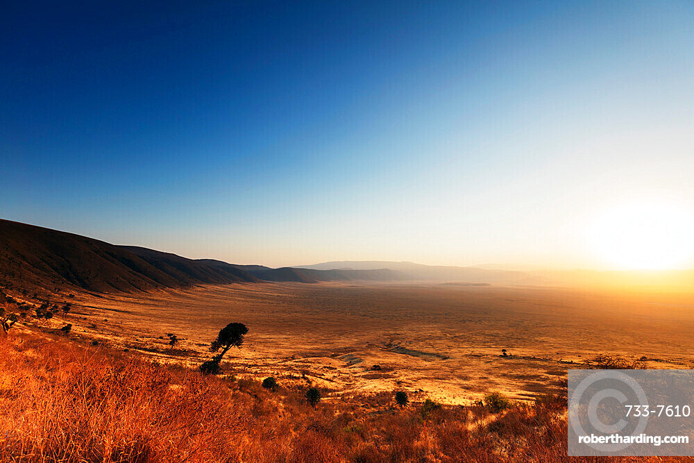 Sunrise, Ngorongoro Crater Conservation Area, UNESCO World Heritage Site, Tanzania, East Africa, Africa