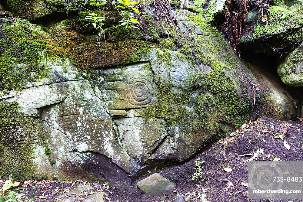 Europe, Spain, Canary Islands, La Palma, Unesco Biosphere site, La Zarza petroglyphs