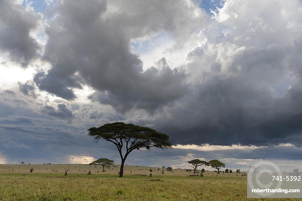 A cloudy sky over the plains of Tsavo, Kenya, East Africa, Africa