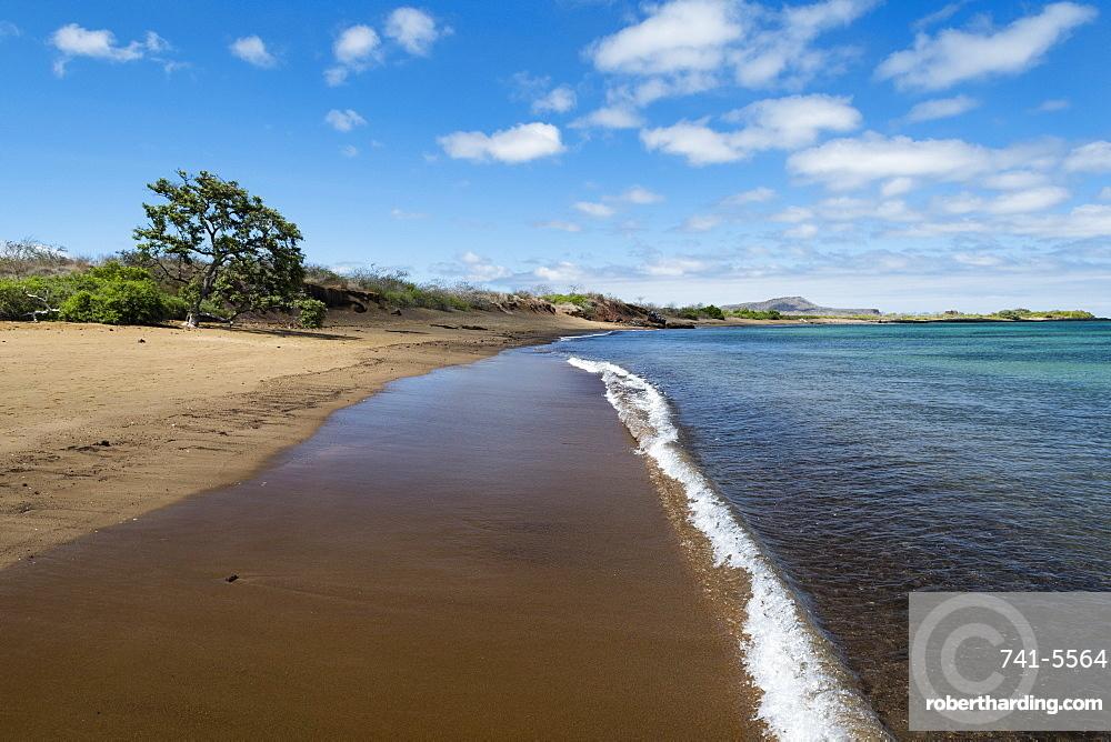 Floreana Island, Galapagos Islands, UNESCO World Heritage Site, Ecuador, South America