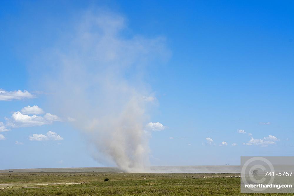 Dust devil, Ndutu, Ngorongoro Conservation Area, Serengeti, Tanzania.