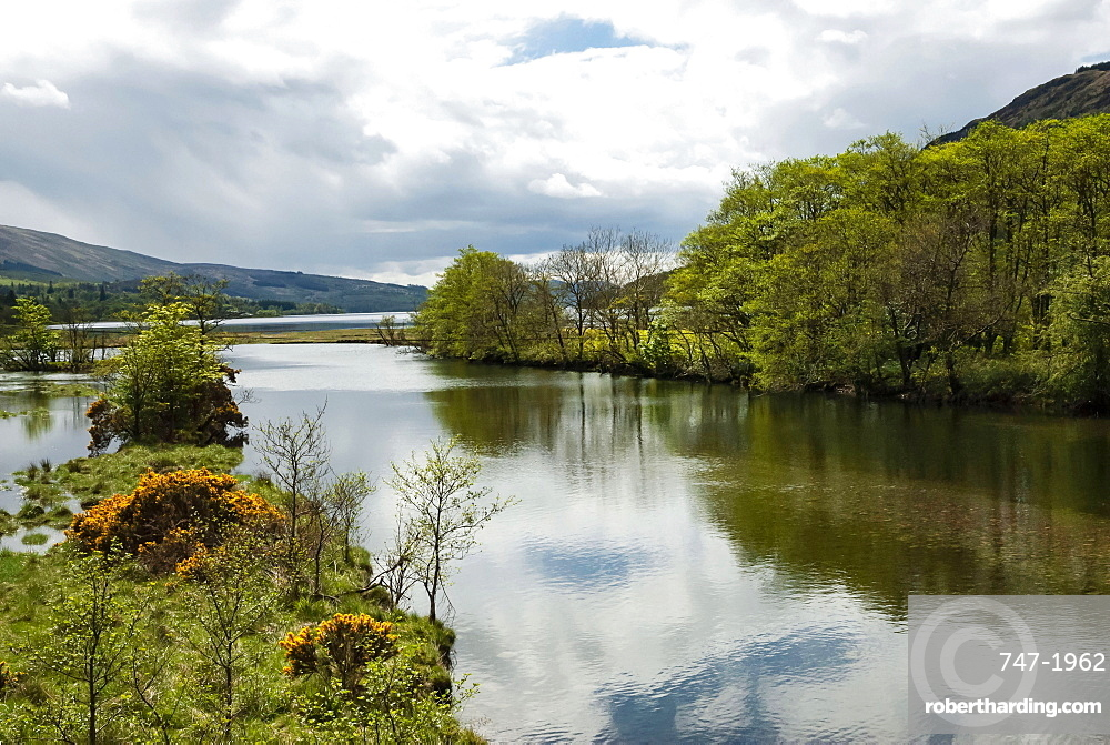 Loch Fyne, Argyll and Bute, Scotland, United Kingdom, Europe