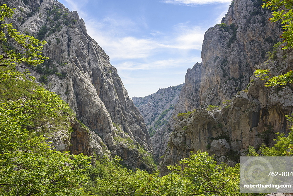 Limestone gorge, Paklenica National Park, Croatia, Europe