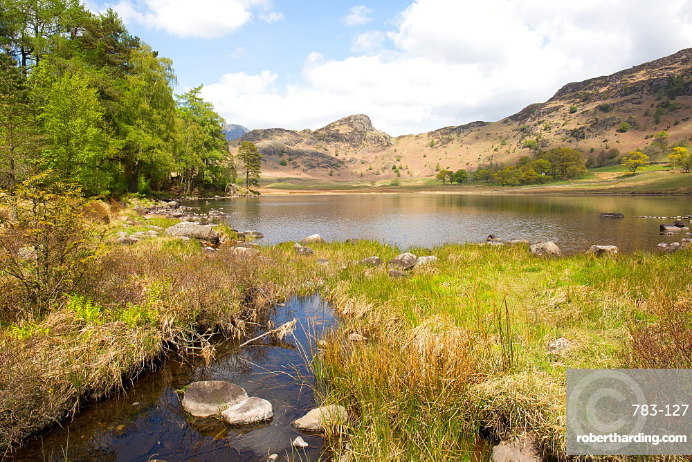 Blea Tarn, Little Langdale, The Lake District, UNESCO World Heritage Site, Cumbria, England, United Kingdom, Europe