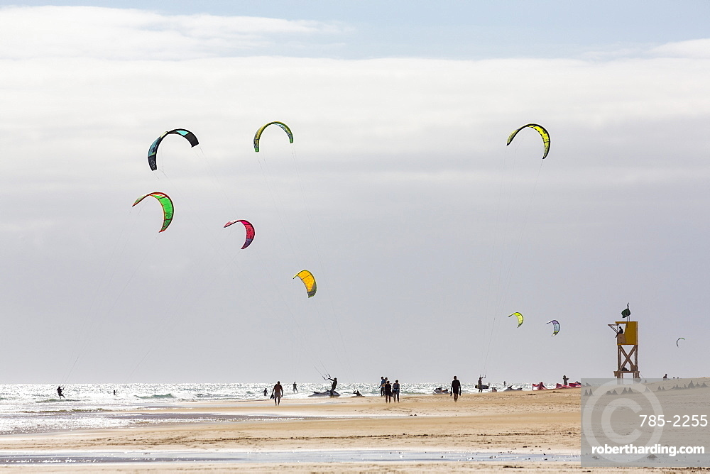 Many people kiteboarding off the Playa de La Barca, Costa Calma, on the volcanic island of Fuerteventura, Canary Islands, Spain, Atlantic, Europe