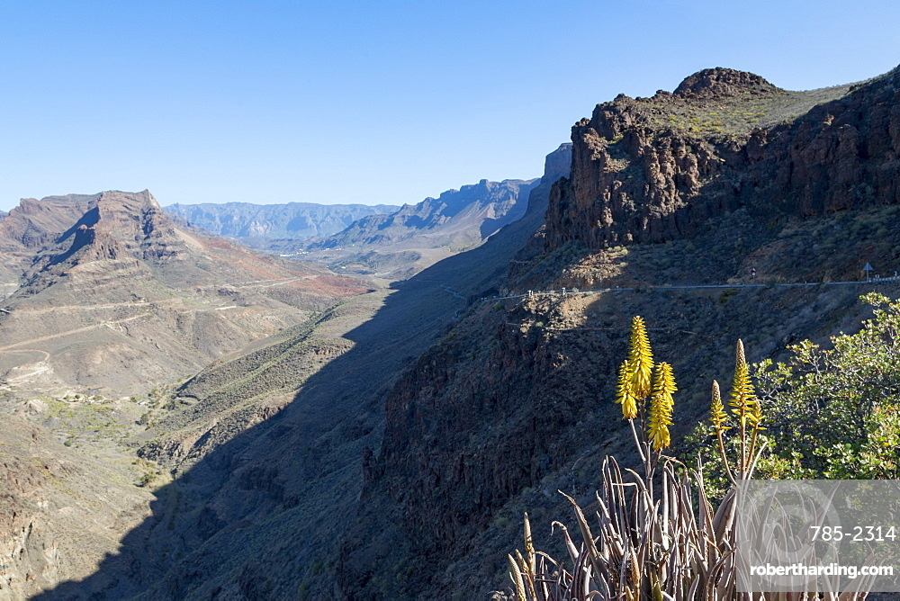 Barranco de Fataga canyon seen from Degollada de La Yegua viewpoint, Gran Canaria, Canary Islands, Spain, Europe