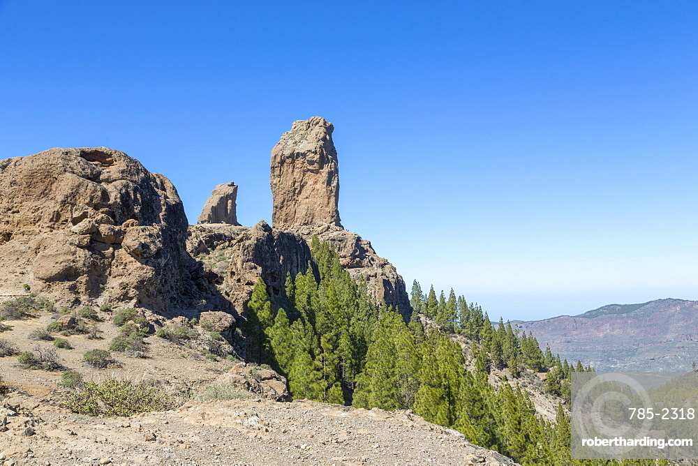 The volcanic Roque Nublo in the Nublo Rural Park in the centre of Gran Canaria, Canary Islands, Spain, Atlantic, Europe