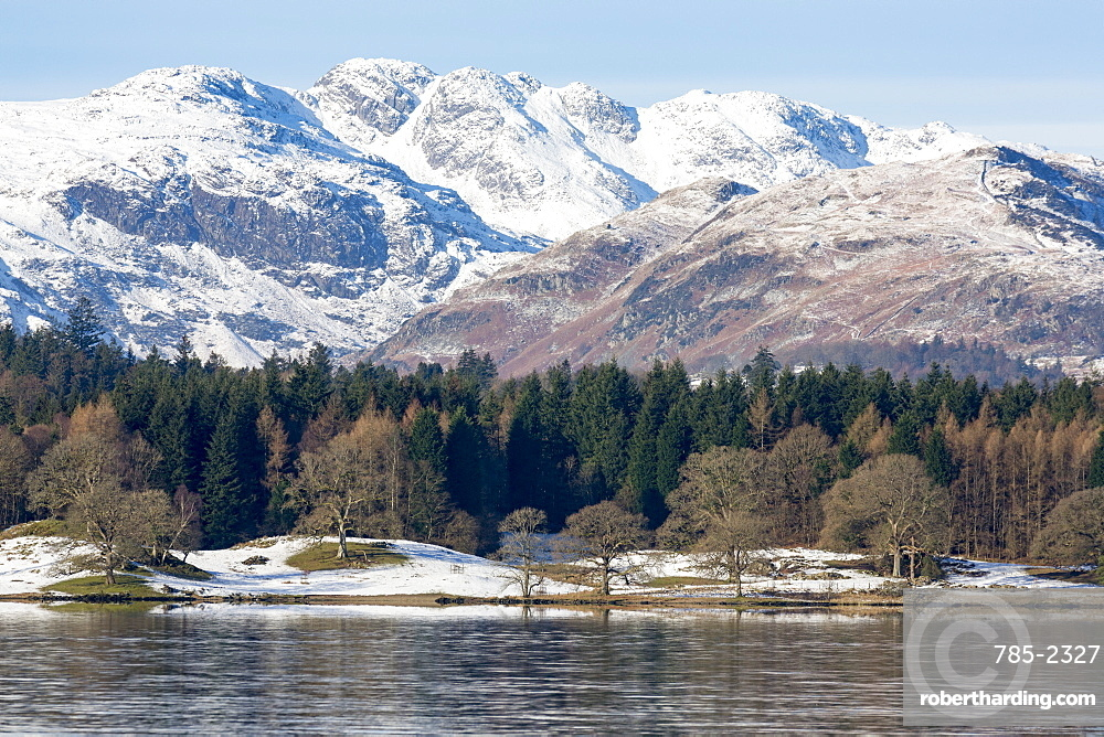 Looking towards the north end of Windermere near Ambleside, with rugged snow covered mountains including Helvellyn, Lake District National Park, UNESCO World Heritage Site, Cumbria, England, United Kingdom, Europe