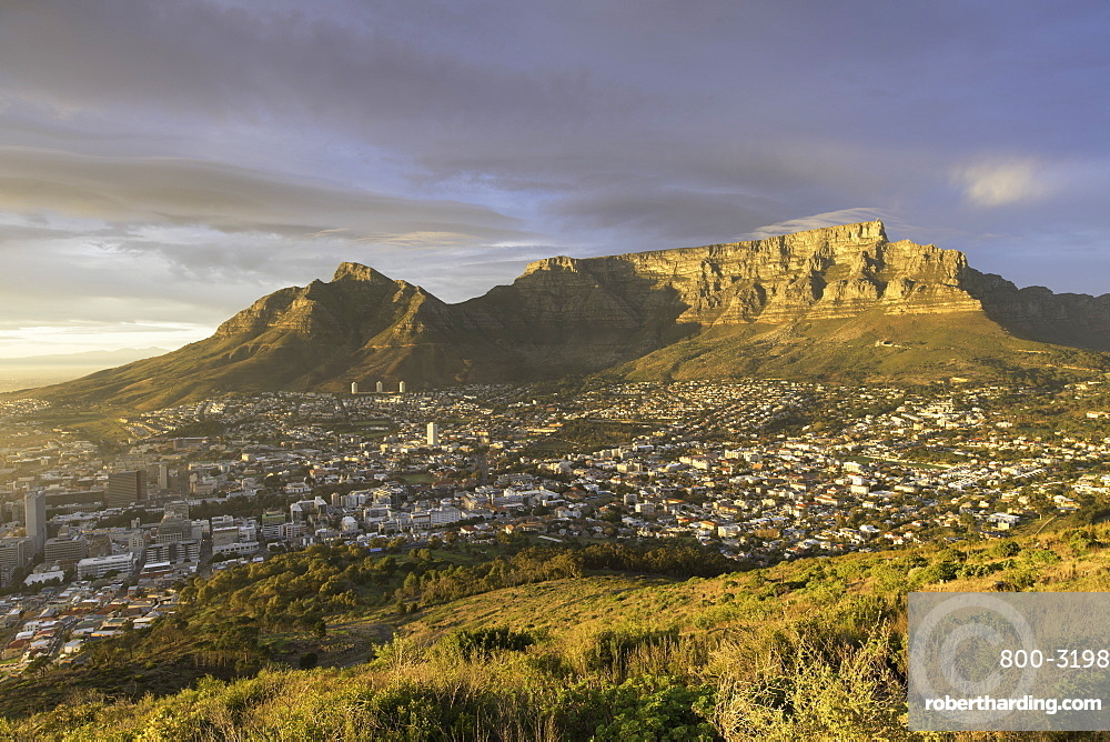 Table Mountain at dawn, Cape Town, Western Cape, South Africa, Africa
